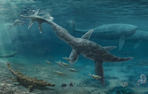 Study of fossil teeth sheds light on Jurassic marine reptiles