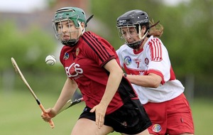 Down camogie making real progress, now final hurdle looms