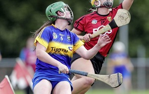 Down must topple big favourites Cork to claim All-Ireland camogie prize