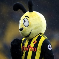 The man behind Watford's controversial Harry the Hornet mascot has stood down