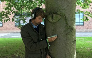 'Tree listener' comes to British Science Festival