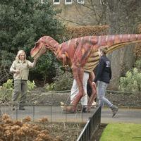Brainy Velociraptor 'hunted in packs'