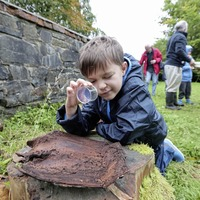 Autumn wildlife hunt soulds like a fun family day out