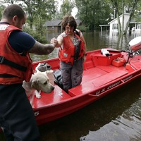 The dedicated owners who kept their pets close when fleeing Florence aftermath
