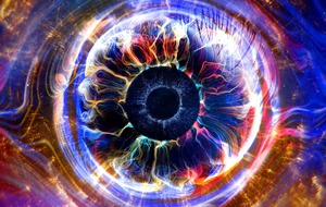 Big Brother has a life of its own, creators say