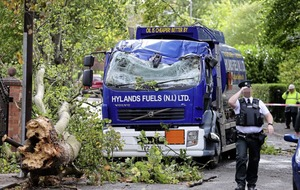 Storm Ali - Oil delivery driver has lucky escape when tree falls on cab