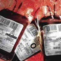 Landmark blood contamination inquiry gets underway