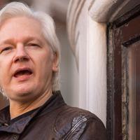 Julian Assange steps down as editor of WikiLeaks