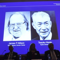 US and Japanese scientists to share Nobel prize for cancer work