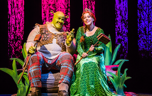 Amelia Lily tells how stage musical version of kids classic Shrek has the X factor
