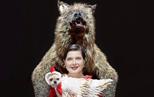 Isabella Rossellini on taking her 'dog show' Link Link to Belfast's Grand Opera House