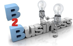 Business functionality and confidence are key to B2B e-commerce web-sites