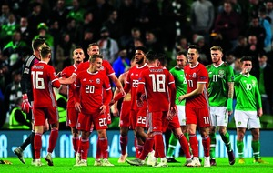 Republic of Ireland crash to Welsh defeat