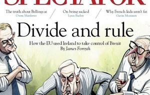 Front cover of The Spectator magazine claims EU has used Ireland to 'take control' of Brexit