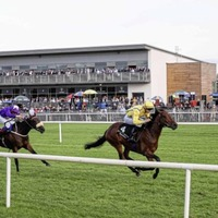 Down Royal racecourse set to close at the end of 2018