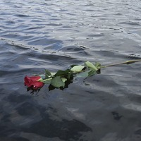 Widow's lakeside note breaks hearts on Twitter