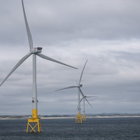Bird collision study at Scotland's largest offshore windfarm