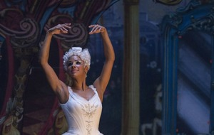 Art forms that don't embrace diversity are unsustainable, says Misty Copeland