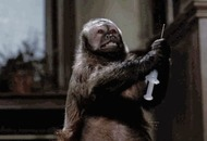 Cult Movie: Monkey Shines a rare miss for chiller master George A Romero