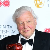 Sir David Attenborough joins Netflix for new nature documentary series