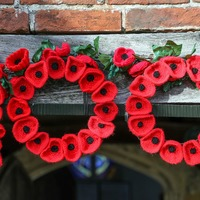 In Pictures: Poppy power as towns transformed for Armistice Day
