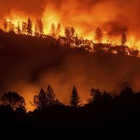 Robin Thicke's home destroyed by US wildfires