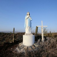 Council that ordered removal of Virgin Mary statue branded 'foolish'