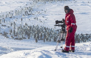 TV viewers praise BBC camera crew for rescuing trapped penguins
