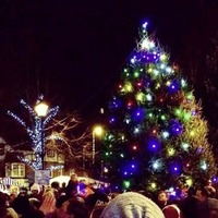 What's On: Santa arrives on his sleigh for a day of festive fun in Holywood
