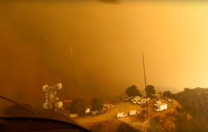 Helicopter pilots save terrified dogs and owner from US wildfires