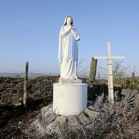 Tyrone priest 'disappointed' by council approach to Virgin Mary statue