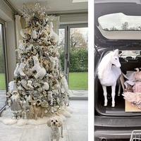 Sleb Safari: Celebrity Christmas decorations are always extra
