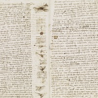 Leonardo da Vinci notebooks display will get 'inside his mind'