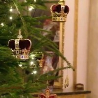 Christmas begins at Buckingham Palace as festive trees are put in place