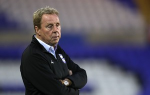 Viewers feel for Harry Redknapp as insect gets trapped in his ear