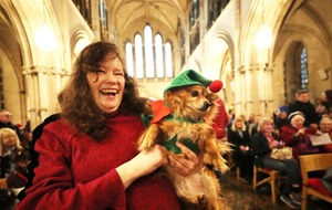 Tails wag as canine choir hits high notes at charity's dog carol service