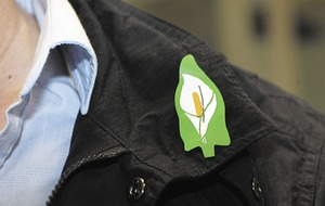 Derry and Strabane council becomes first to allow staff to wear Easter lily