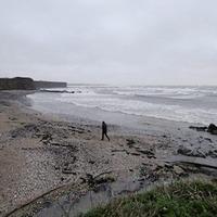 Gardaí concern for mother after baby's body found on Dublin beach