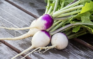 Gardening: Top turnip tips – a quick guide to growing your own 'neeps'
