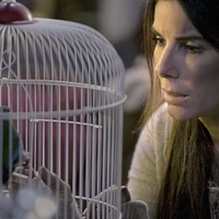 Sandra Bullock: We need to change film's fairytale idea of what motherhood looks like