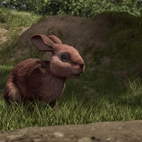 James McAvoy 'almost passed out' making rabbit noises for Watership Down