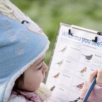 Children take part in biggest wildlife survey in schools