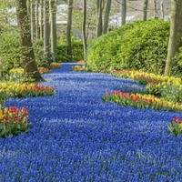 Gardening: Five of the best gardens to visit around the world when you're on holiday