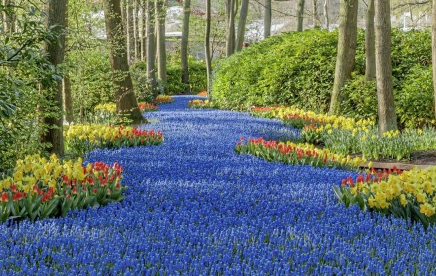 Gardening Five Of The Best Gardens To Visit Around The World When