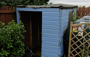 Andrew Watson: Growing with the garden shed gospel