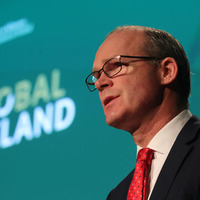 Simon Coveney: Ireland will not stand in way if UK asks for extension to Article 50