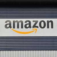 Amazon is not dominant, senior executive tells committee