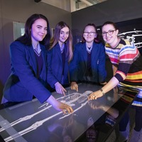 New science exhibition sheds light on mass of blood vessels in human body