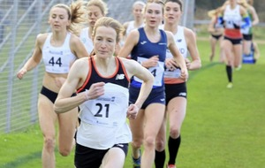 Ireland's Fionnuala McCormack stands out at Cross Country international