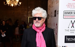 Pedro Almodovar: Spanish film becoming bigger all over the world
